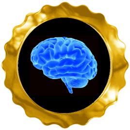 tease my brain award